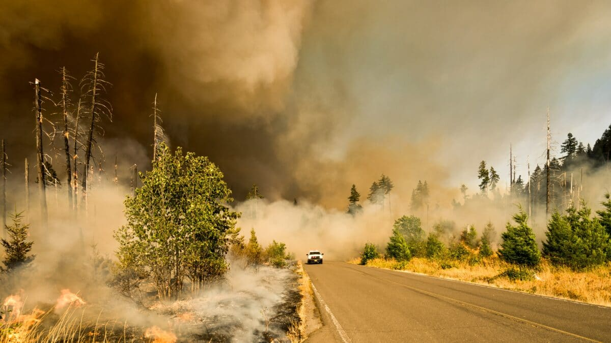 Greater Nevada offers $5K to the Red Cross in support of Caldor Fire relief