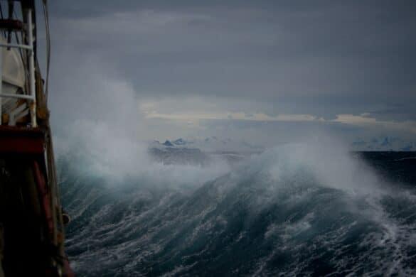 Dennis Stolpner tropical storm